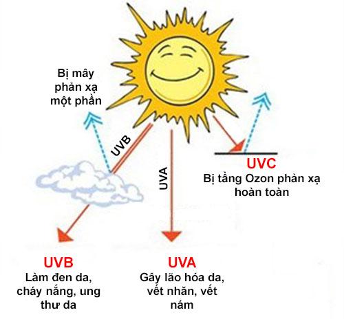 Tìm Hiểu Về Tia UV