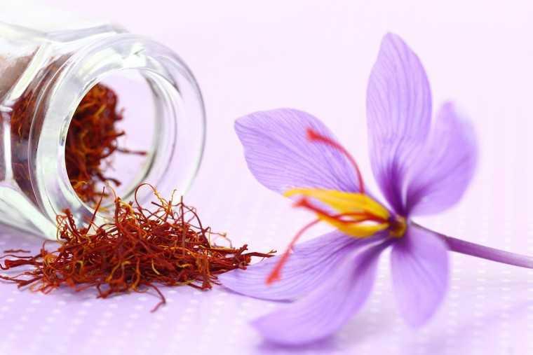 Cách Uống Nhụy Hoa Nghệ Tây Cho Cơ Thể Khỏe Mạnh